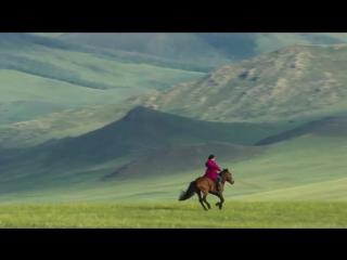 Монголия. Лошади. Монгольские ковбои