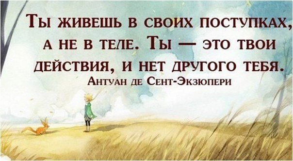 http://cs628028.vk.me/v628028284/335f2/Z48i86oL_mo.jpg