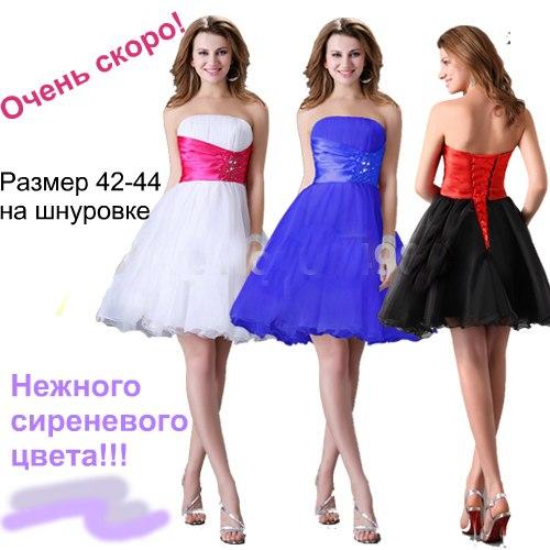 Платье Напрокат Цена