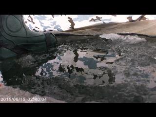 Зимняя рыбалка хотомля 09 01 2016 момент поклевки