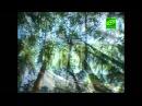 ТК СОЮЗ. ПО СВЯТЫМ МЕСТАМ. ВАЛААМ. фильм-6 (27-08-2010)