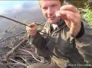 Примитивная рыболовная удочка из крапивы и газовой зажигалки