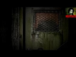 Истории на ночь - Пойдем в подвал