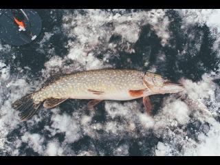 Зимняя рыбалка в Финляндии. Первый лед 2016 года