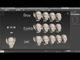 Face Rig 2 - Morphs &amp Mirror