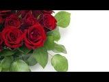 Самое красивое Поздравление С Юбилеем 50 Лет Любимой Жене От Мужа