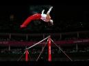 Подборка сложных элементов мужской спортивной гимнастики Классификация элементов