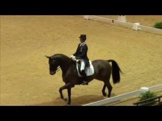 Carl Hester Nip Tuck - Kur Olympia 2015- 83.750 %