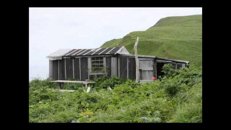 домики на острове Медном huts on Medny Island