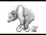 Медведь на велосипеде или моя не первая татуировка 4K