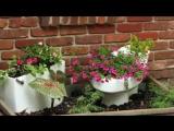 Цветники своими руками в ванной, унитазе, умывальнике. Цветники на даче в сантехнике