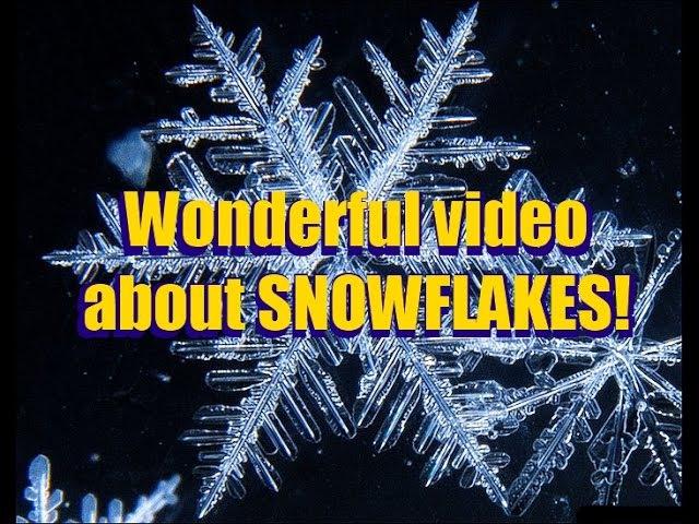 Снежинки и лёд под микроскопом и макросъёмки