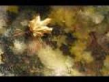 Paula Cole - Autumn Leaves