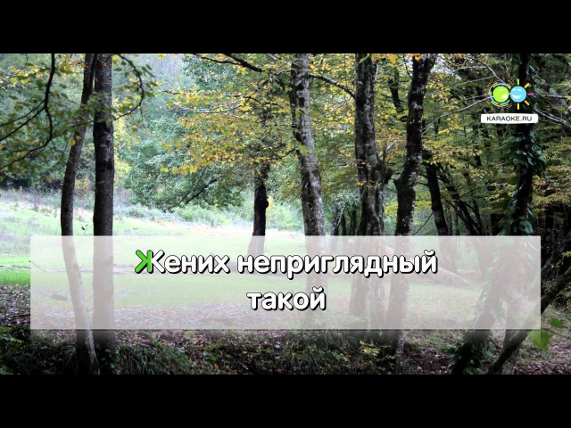 У церкви стояла карета - Народная (karaoke.ru)