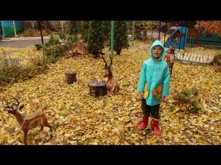 Максим Титушин, 6 лет, был в садике на утреннике дождиком, вот такую песенку исполнял...