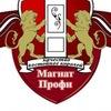 Магнат-Профи (двери входные и межкомнатные)
