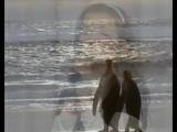 Океан Божьей любви