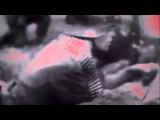 Virgins Blood of Cachtice - Трансцендентальный гимн муравьиной наноэволюции