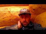 У кого делать сруб? 3.05.13. часть 10 Деревянный рубленный кедровый дом баня