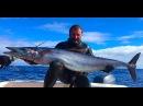 Подводная Охота. Азорские Острова. Spearfishing in the Azores Pico Islands 2015