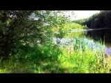 Прогулка к лесному озеру и ловля ротана на спиннинг