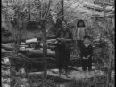 Бабушки и внучата(1969)