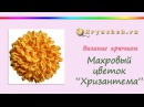 Связанный крючком махровый цветок Хризантема Crocheted flower terry Chrysanthemum