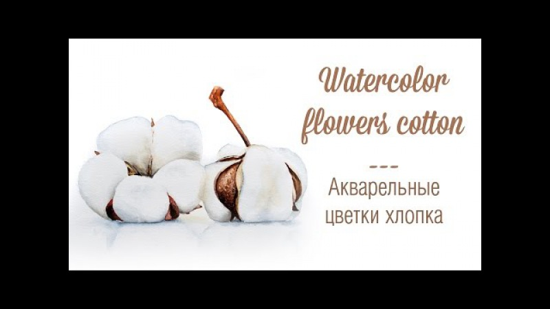 Цветы хлопка акварелью | How to paint a white cotton flower in watercolors