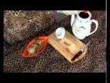 Имбирь для похудения - чай для похудения