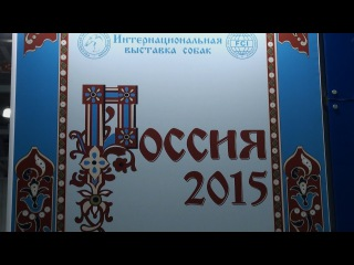 Dog Show Russia 2015 day 2 - Tatra Shepherd Dog /Польская Подгалянская Овчарка