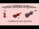 Струнные инструменты симфонического оркестра