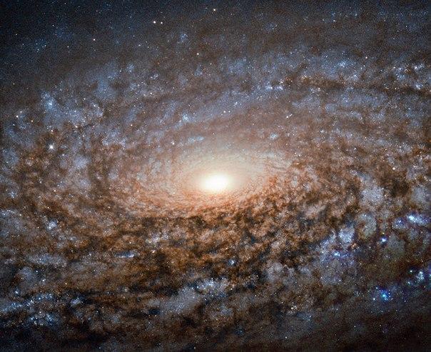 Новая порция космической красоты от телескопа Hubble – «шерстяная» галактика!