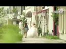 [8 серия] Любовь после свадьбы / Под венец без свиданий / Брак без любви / Женимся, не встречаемся / Жениться нельзя встречаться