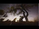 Deedrah- Journey To The Cross Roads (Arhetip Rmx)