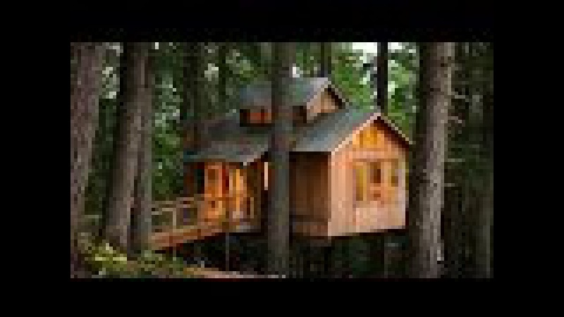 Дом на дереве. Жизнь в лесу вдали от цивилизации