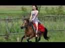Beautiful Girls Riding on Pony Compilation