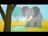 Животные для детей_ дикие животные в Африке, развивающие мультики для самых маленьких, учим животных
