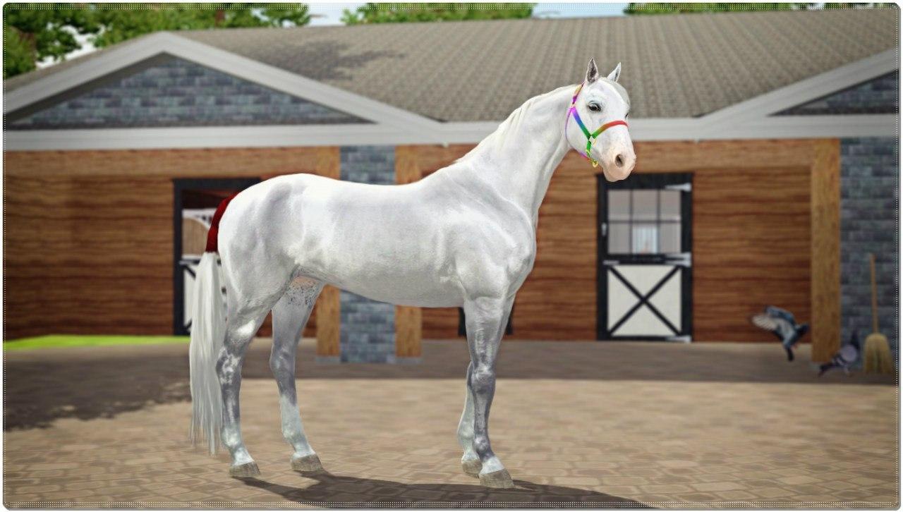 Заявки на удаление лошади из списка - Страница 2 HG9M3MoGVBU
