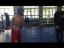 Чемпионат Украины по кикбоксингу WKA