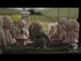 Sagopa Kajmer - İster istemez (Uyarlama Klip HD)