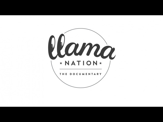 Logo animation: Llama Nation in After Effects