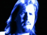 The Jeff Healey Band - I should have told you