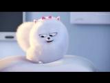 Тайная жизнь домашних животных - Русский тизер-трейлер (2016) HD (2015)