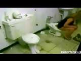 В женском туалете живой унитаз !!!