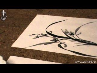 Уроки по китайской живописи дикая орхидеи 兰花 Урок 9