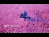 My little pony Ambient prologue Молодая принцесса Селестия этот Новый дивный мир lets play