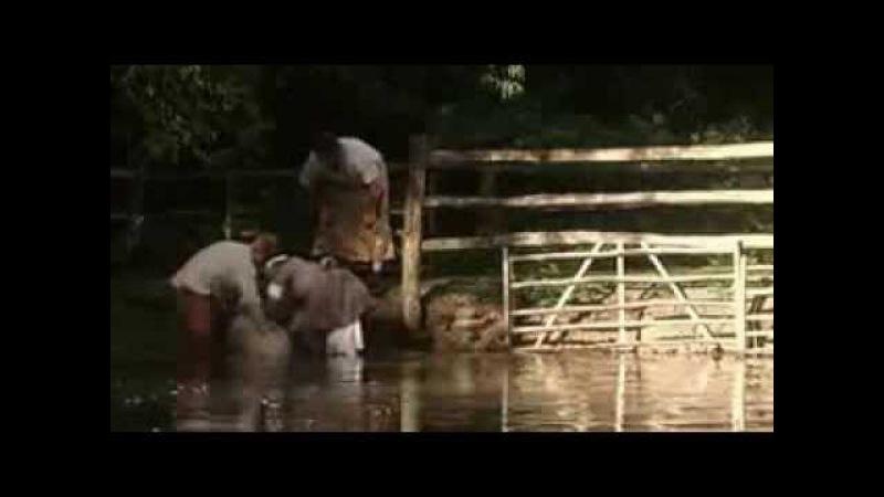 Ферма во времена Тюдоров 2 серия
