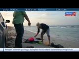 После кораблекрушения у берегов Ливии пропали без вести сотни беженцев