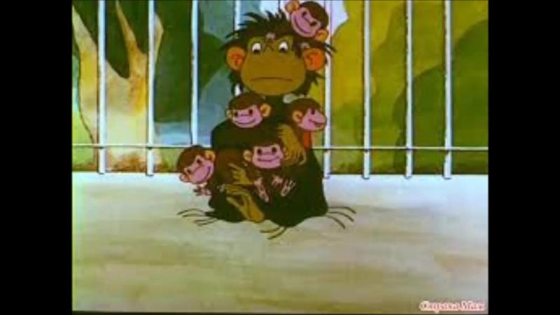 Мой фильм год обезьянки и спеленка