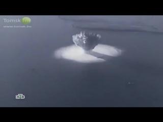 Кино бомба с таней таней онлайн